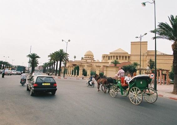 Maroc 2012 - Cordes-Aux-Voix - concours international - calèche et cheval